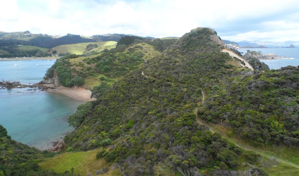 Mahinepua Peninsular Track